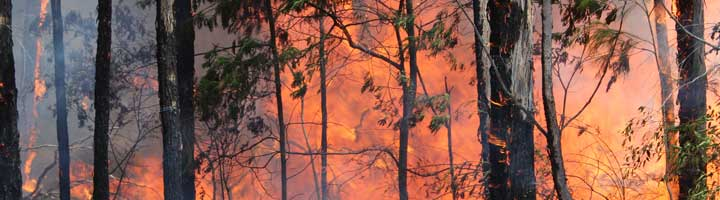 Bushfire Construction Requirements